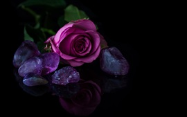Preview wallpaper Pink rose, stones, black background