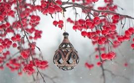 Vorschau des Hintergrundbilder Rote Beeren, Zweige, Spielzeug Dekoration