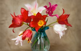 Preview wallpaper Red, pink, white tulips, vase