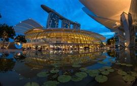 Singapore, park, design, pond, lights, night