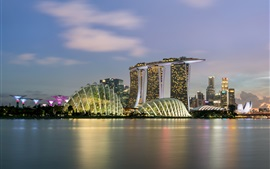 Сингапур, небоскребы, море, огни, ночь