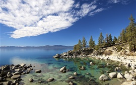 Preview wallpaper Tahoe lake, trees, stones, USA