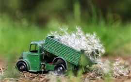 Toy truck, dandelions
