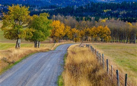 Preview wallpaper Trees, grass, road, fence, autumn, Canada