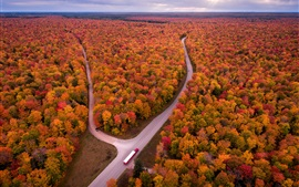 Preview wallpaper USA, Michigan, autumn, trees, road, truck, top view