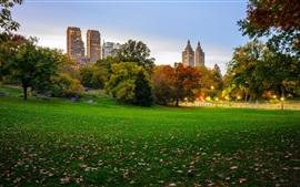EUA, Nova York, Central Park, arranha-céus, gramado, árvores, outono