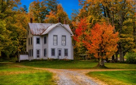 Estados unidos de américa, nueva york, mansión, casa, árboles, trayectoria, otoño