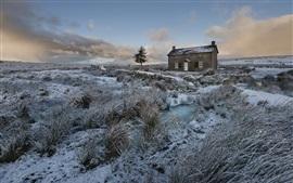 Invierno, hierba, nieve, casa, anochecer