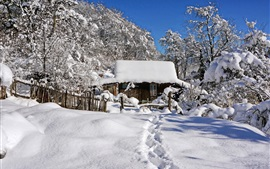Preview wallpaper Winter, thick snow, hut, trees