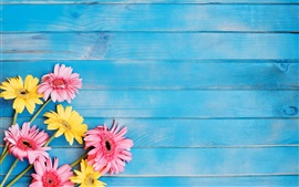 Preview wallpaper Yellow and pink gerbera flowers, blue wood board background