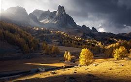 Autumn, morning, mountains, trees, sunshine