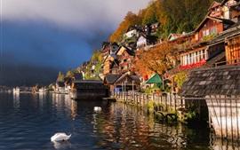 Beautiful city view, Hallstatt, Austria, houses, lake, ducks