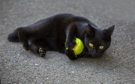 Gato preto jogar uma bola no chão
