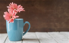 Preview wallpaper Blue cup, pink gerbera flowers