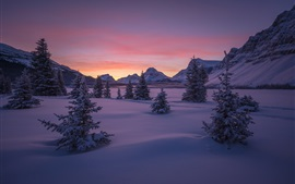 Preview wallpaper Canada, Banff National Park, forest, valley, snow, winter, mountains