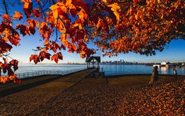 Preview wallpaper Canada, Vancouver, autumn, maple leaves, pier, coast