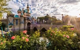 Disneyland, mañana, rosas, nubes, rayos del sol