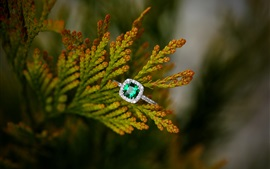 Preview wallpaper Emerald ring, twigs