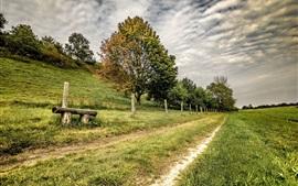 Поля, забор, трава, деревья