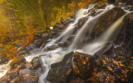 Preview wallpaper Finland, Northern Savonia, Maaninka, waterfall, stones, forest