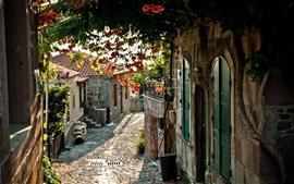 Франция, город, дорога, дома, цветы