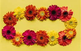 Preview wallpaper Gerbera flowers background, yellow, red, orange