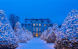 Allemagne, Saxe, neige, hiver, lumières, arbres, nuit, château, Noël