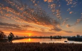 Alemania, estanque, amanecer, mañana, nubes, amanecer