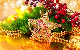 Gold star, decoration, beads, berries, Christmas