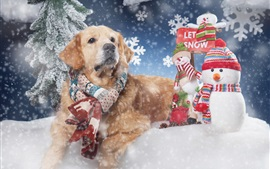 Preview wallpaper Golden Retriever in the winter, scarf, snow, snowman