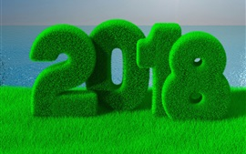 Happy New Year 2018, green, grass