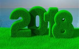 壁紙のプレビュー 幸せな新年2018、緑、草