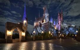 Hogwarts School, castillo, noche