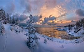 Lago Ladoga, floresta, árvores, gelo, neve, inverno, Rússia
