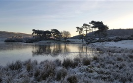Preview wallpaper Lake, grass, trees, frost, morning