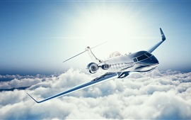 Learjet 45 private jet, plane, sky