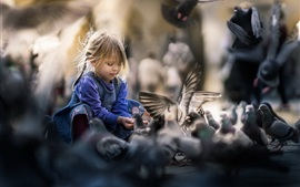 Lovely child girl feeding doves