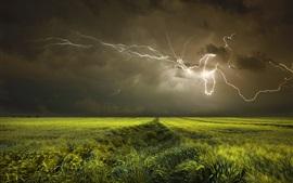 Preview wallpaper Night, fields, clouds, lightning