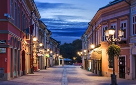 Preview wallpaper Novi Sad, Serbia, evening, street, lights, clouds