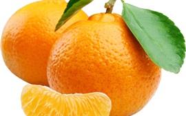 Orange, agrumes, feuilles, fond blanc