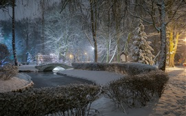 Park, night, trees, river, bridge, lamp, winter