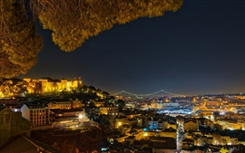 Portugal, Lisbon, city night, lights, trees, houses