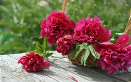Preview wallpaper Red peonies, basket