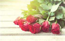 Rosas vermelhas, buquê, brilho