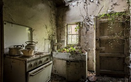 Preview wallpaper Ruins kitchen, furniture, door, plants growing