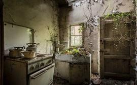 Ruinas de cocina, muebles, puertas, plantas creciendo