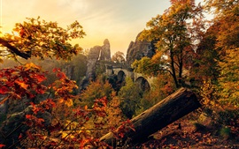 Saxony, Germany, bridge, trees, rocks, sun rays, autumn
