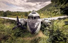 Preview wallpaper Scrap, plane, bushes