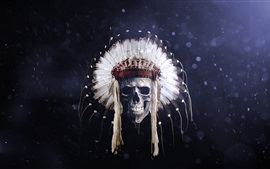 Preview wallpaper Skull, Indian, feathers, creative picture