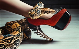 Preview wallpaper Snake and heels, leg, spikes